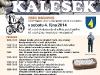 kalesek2014_11