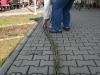 pomlazka2010_12