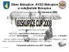 biskupiceCUP_2008.jpg