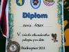 tabor_2011_52